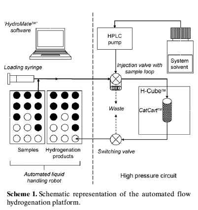 Automated Flow Hydrogenation Platform