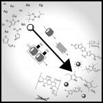 792. Chem. Eur. J., 2014, 20, 12348-12366